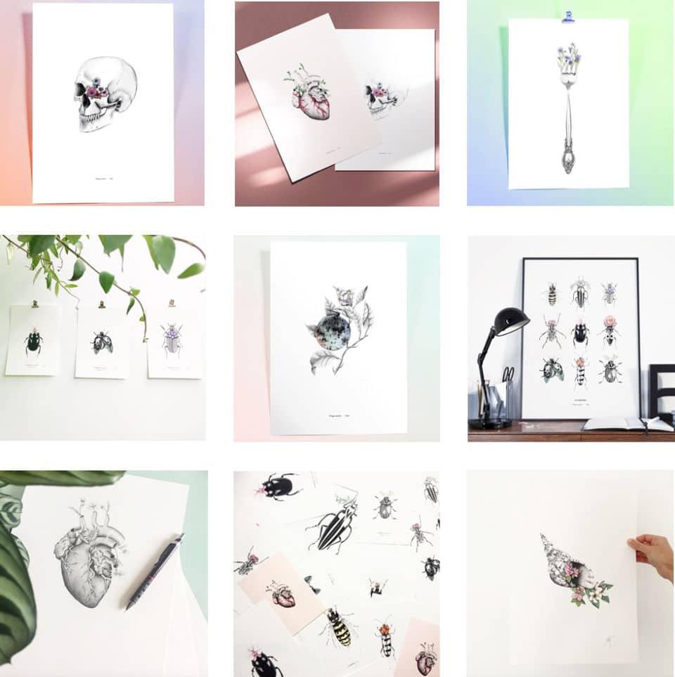 Les insectes fantastiques de l'illustratrice Marion Kieu